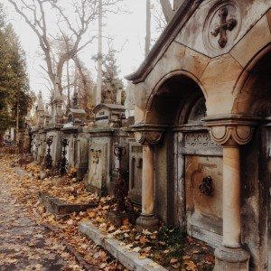 The Lychakiv Cemetery is stunning in the fall